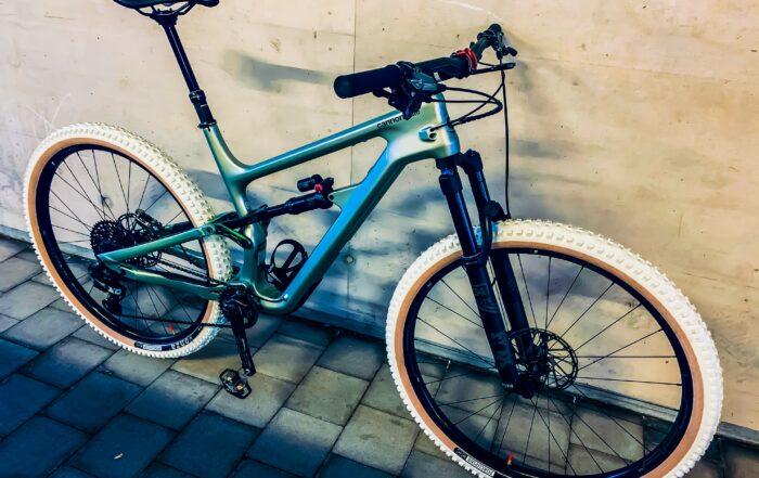 custom made bike rainbow